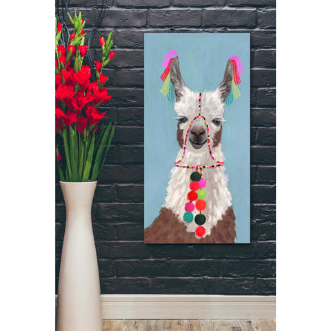 'Adorned Llama I' by Victoria Borges Giclee Canvas Wall Art