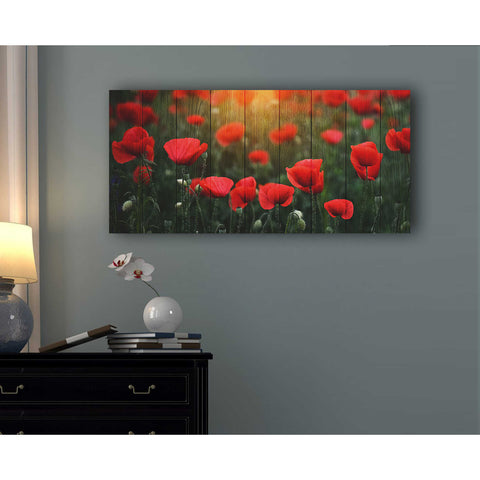 "Image of ""Wood Series: Field of Poppies"" Giclee Canvas Wall Art"