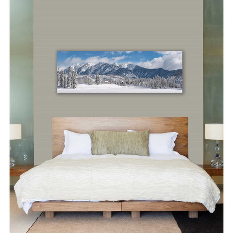 Image of 'Colorado Winter Wonderland' by Darren White, Canvas Wall Art,20 x 60