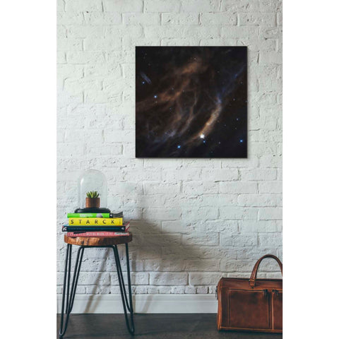 'Within Canis Majoris' Hubble Space Telescope Giclee Canvas Wall Art