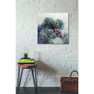 'Abstract Hydrangea' by Danhui Nai, Canvas Wall Art,26 x 26