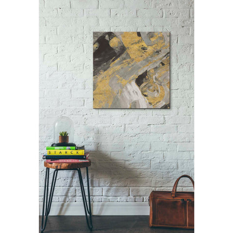 Image of 'Moab Gold and Black' by Albena Hristova, Canvas Wall Art,26 x 26
