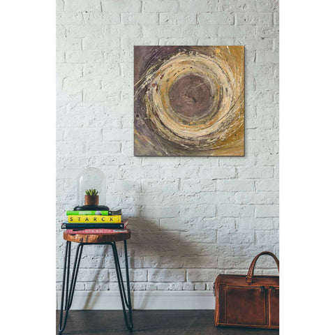 Image of 'Wooden Rings' by Albena Hristova, Canvas Wall Art,26 x 26