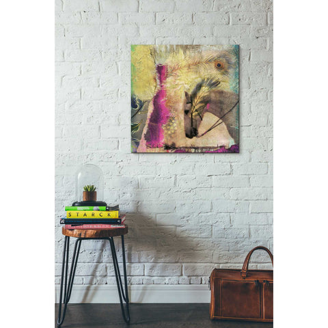 Image of 'White Horse' by Elena Ray Canvas Wall Art,26 x 26