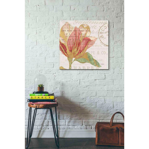 Image of 'Bookshelf Botanical III' by Katie Pertiet, Giclee Canvas Wall Art