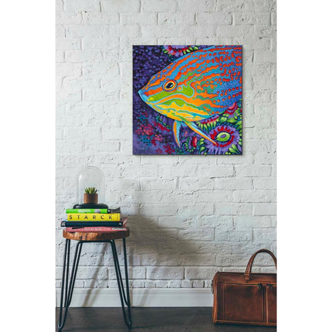 Image of 'Brilliant Tropical Fish I' by Carolee Vitaletti Giclee Canvas Wall Art