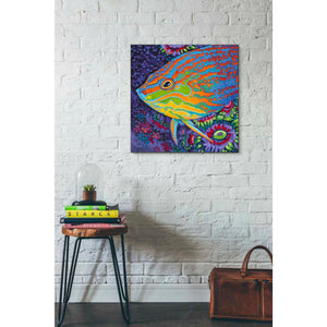 'Brilliant Tropical Fish I' by Carolee Vitaletti Giclee Canvas Wall Art