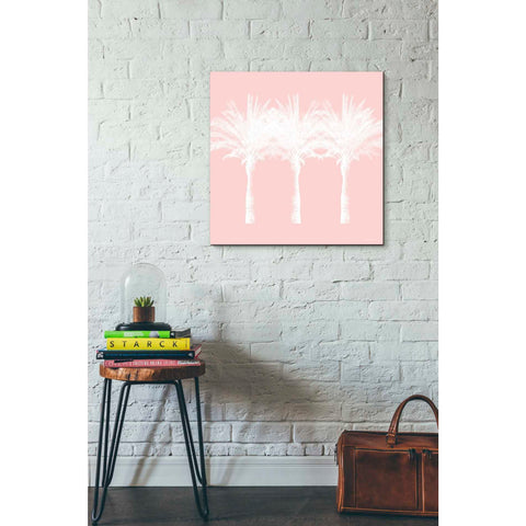 'White And Pink Palm Trees' by Linda Woods, Canvas Wall Art,26 x 26