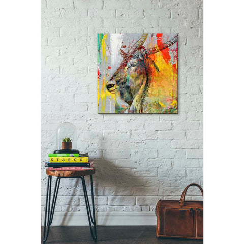 'Arty Beast 1' by Karen Smith, Giclee Canvas Wall Art