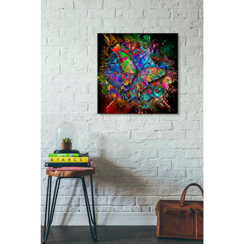Image of 'Monarch' Canvas Wall Art,26 x 26