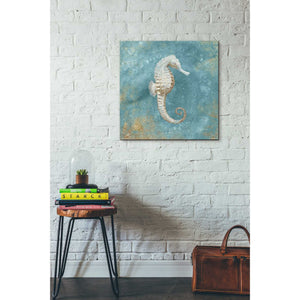 'Treasures From The Sea I' by Danhui Nai, Canvas Wall Art,26 x 26