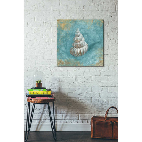 """Treasures From The Sea II"" by Danhui Nai, Giclee Canvas Wall Art"