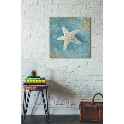"""Treasures From The Sea IV"" by Danhui Nai, Giclee Canvas Wall Art"