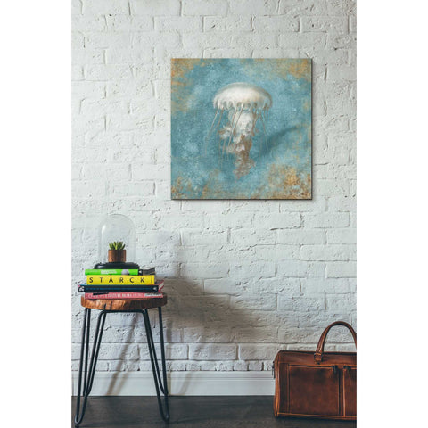 """Treasures From The Sea VI"" by Danhui Nai, Giclee Canvas Wall Art"