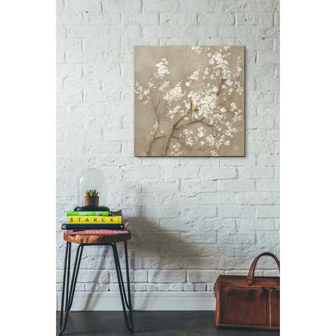 Image of 'White Cherry Blossom I Neutral' by Danhui Nai, Canvas Wall Art,26 x 26
