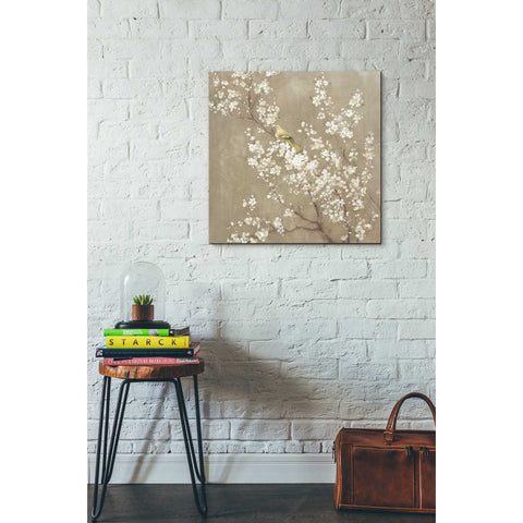 "Image of ""White Cherry Blossom II Neutral"" by Danhui Nai, Giclee Canvas Wall Art"