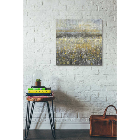 "Image of ""Rain Abstract II"" by Danhui Nai, Giclee Canvas Wall Art"