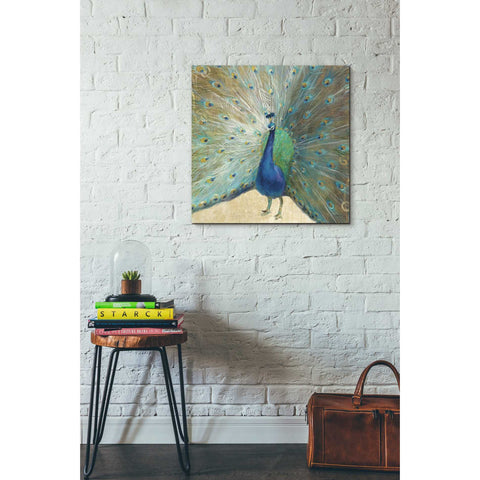 Image of 'Blue Peacock' by Danhui Nai, Canvas Wall Art,26 x 26