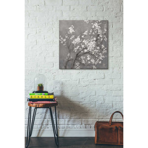 """White Cherry Blossom I on Grey"" by Danhui Nai, Giclee Canvas Wall Art"