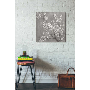'White Cherry Blossom II on Grey' by Danhui Nai, Canvas Wall Art,26 x 26