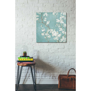 'White Cherry Blossom II on Blue' by Danhui Nai, Canvas Wall Art,26 x 26