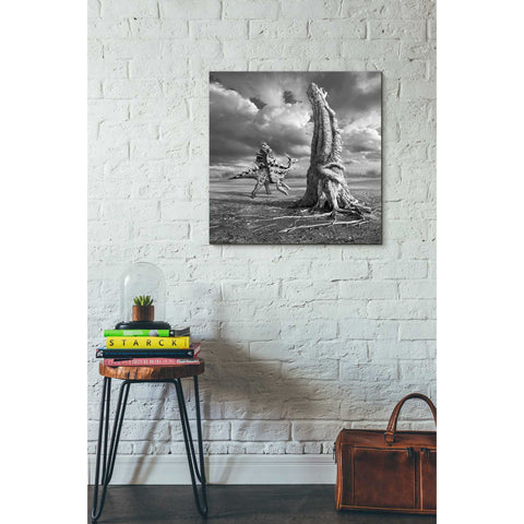 "Image of ""Ancient Warrior"" by Dariusz Klimczak, Giclee Canvas Wall Art"