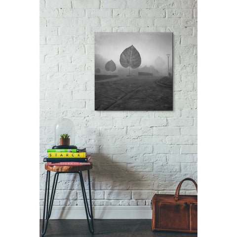 "Image of ""Leave Alley"" by Dariusz Klimczak, Giclee Canvas Wall Art"