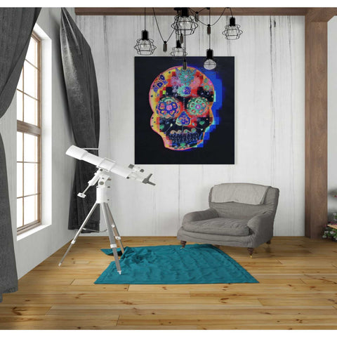 'Colorful Skull' by Irena Orlov, Canvas Wall Art,26 x 30