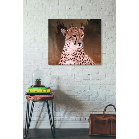Image of 'Wildness Cheetah' by Karen Smith, Giclee Canvas Wall Art