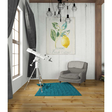 Image of 'Floursack Lemon I' by Danhui Nai, Canvas Wall Art,26 x 34