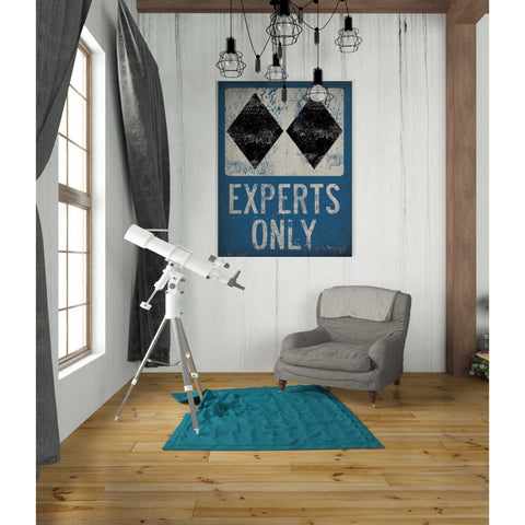 Image of 'Experts Only Blue' by Ryan Fowler, Giclee Canvas Wall Art