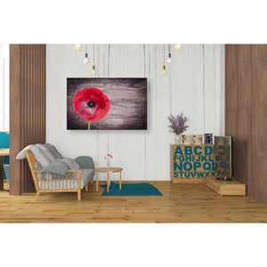 'Luxury On Rustic' Giclee Canvas Wall Art