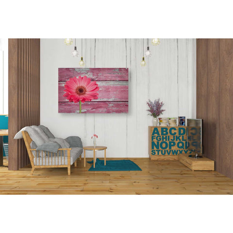 Image of 'Pink Beginnings' Canvas Wall Art,26 x 40