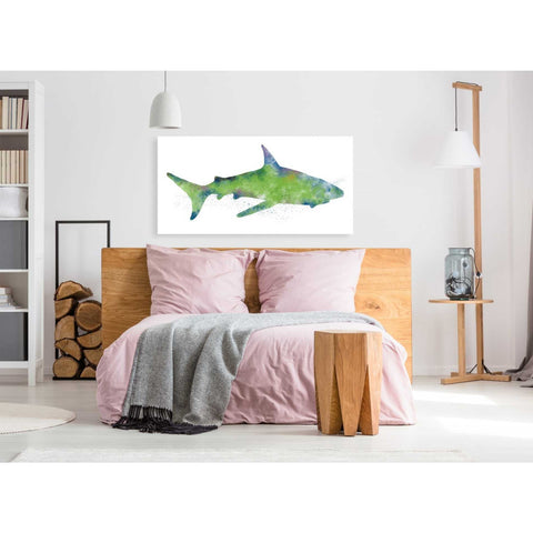 'Watercolor Shark II' by Linda Woods, Giclee Canvas Wall Art