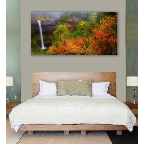 'Silver Falls' by Darren White, Canvas Wall Art,30 x 60