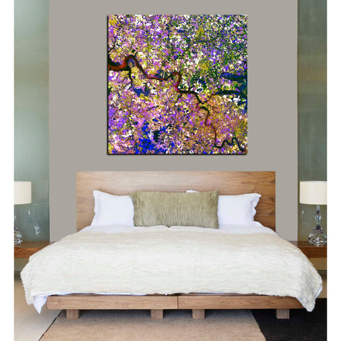 'Earth As Art: Tessera Mosaic' Giclee Acrylic Wall Art