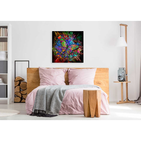 Image of 'Monarch' Canvas Wall Art,37 x 37