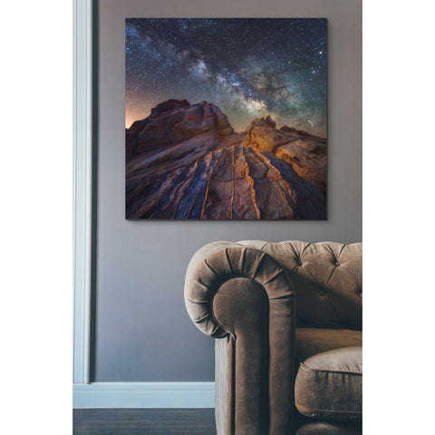 'The Martian Landscape' by Darren White, Canvas Wall Art,37 x 37