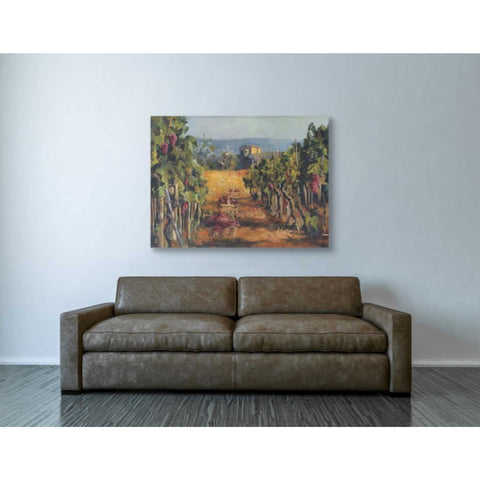 Image of 'Rhone Valley Vineyard' by Marilyn Hageman, Giclee Canvas Wall Art
