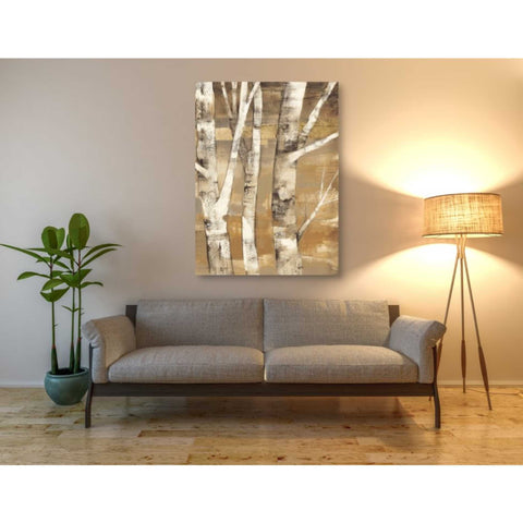 Image of 'Wandering Through the Birches II' by Albena Hristova, Giclee Canvas Wall Art