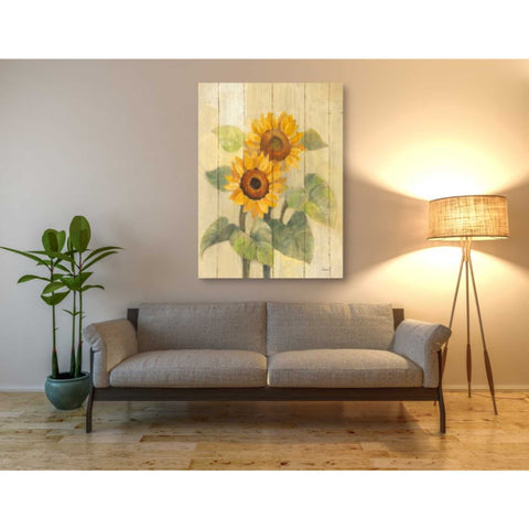 Image of 'Summer Sunflowers I on Barn Board' by Albena Hristova, Giclee Canvas Wall Art