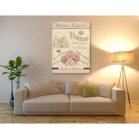 Image of 'French Seed Packet III' by Daphne Brissonet, Giclee Canvas Wall Art