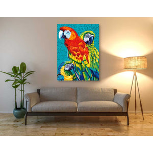 'Birds in Paradise III' by Carolee Vitaletti Giclee Canvas Wall Art