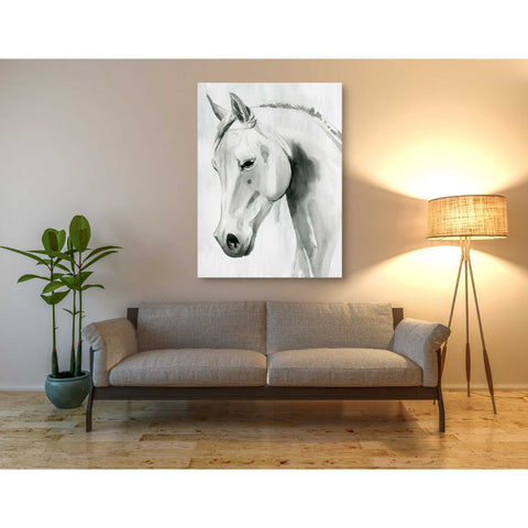 'Horse Whisper I' by Grace Popp Canvas Wall Art,40 x 54