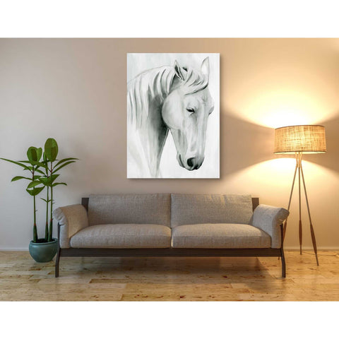 'Horse Whisper II' by Grace Popp Canvas Wall Art,40 x 54