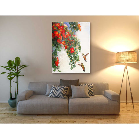 Image of 'Hanging Red Roses and Hummers' by Chris Vest, Giclee Canvas Wall Art