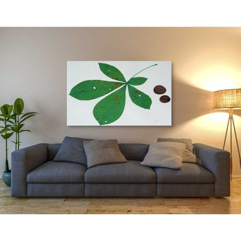 'Horse Chestnut' by Zigen Tanabe, Giclee Canvas Wall Art