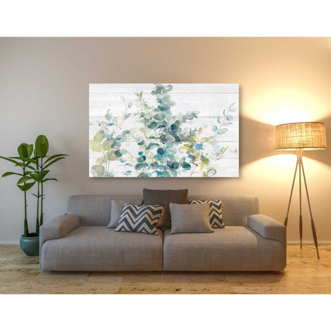 Image of 'Eucalyptus I on Shiplap Crop' by Danhui Nai, Canvas Wall Art,40 x 60