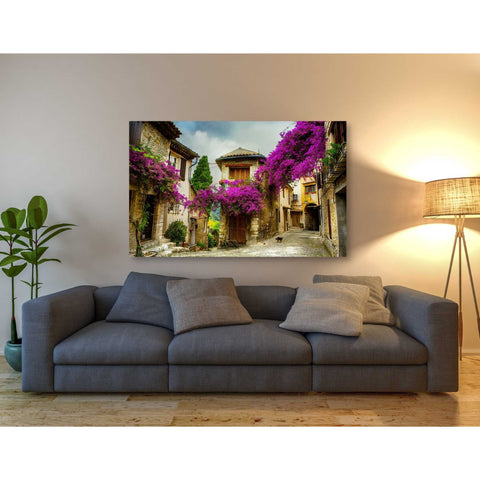 'Bougainvillea' Canvas Wall Art,40 x 60