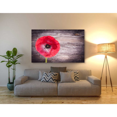 Image of 'Luxury On Rustic' Giclee Canvas Wall Art